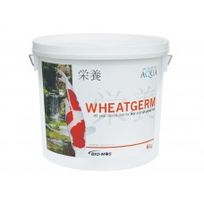 Evolution Aqua Wheatgerm 6kg